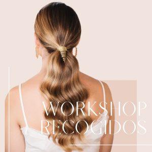 Workshop recogidos profesionales